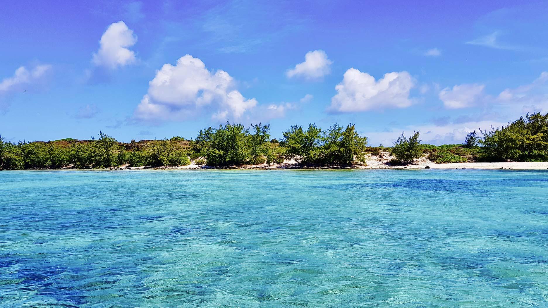 eau transparent à l'ile plate de l'ile maurice