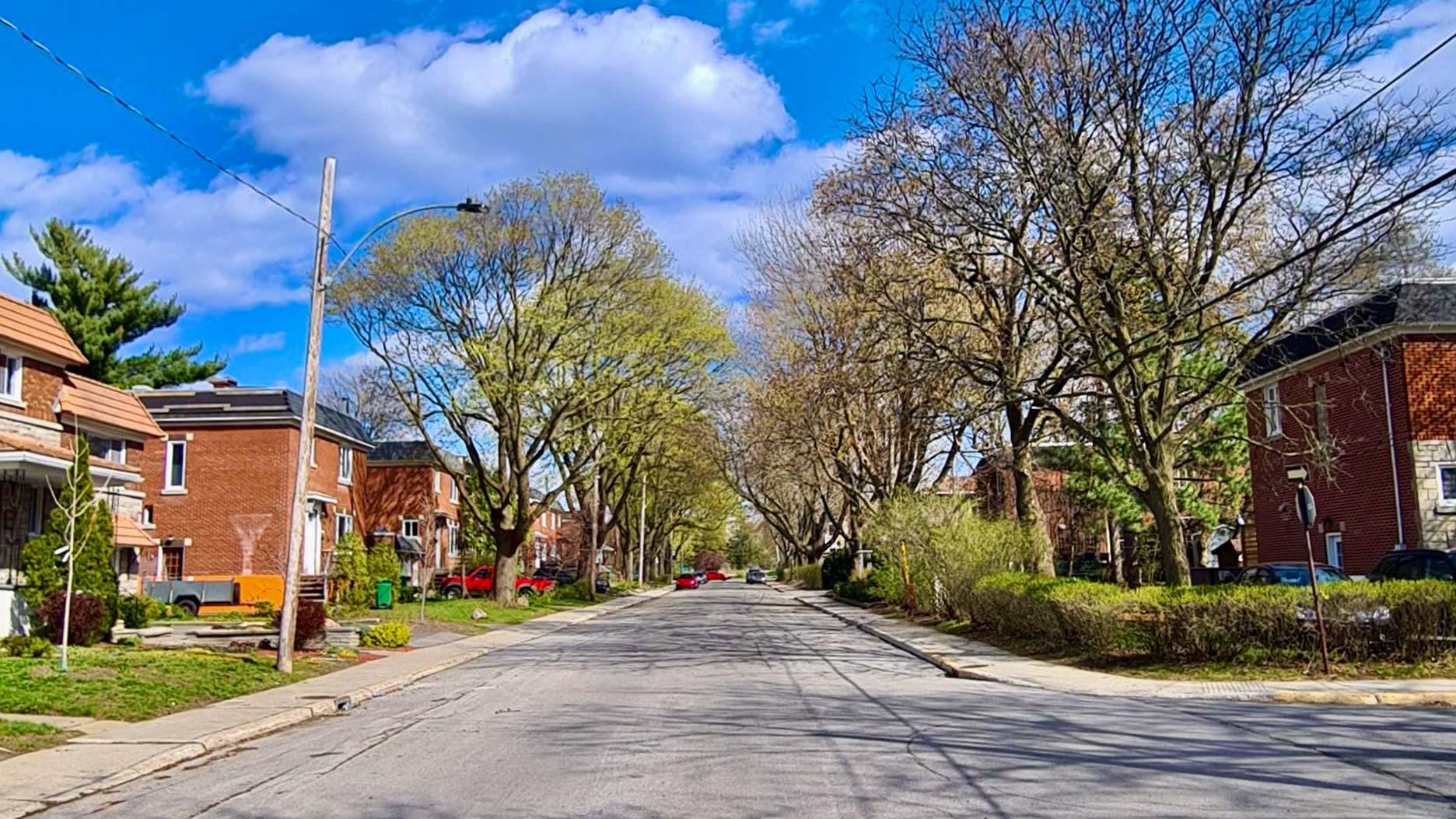 rue à montreal