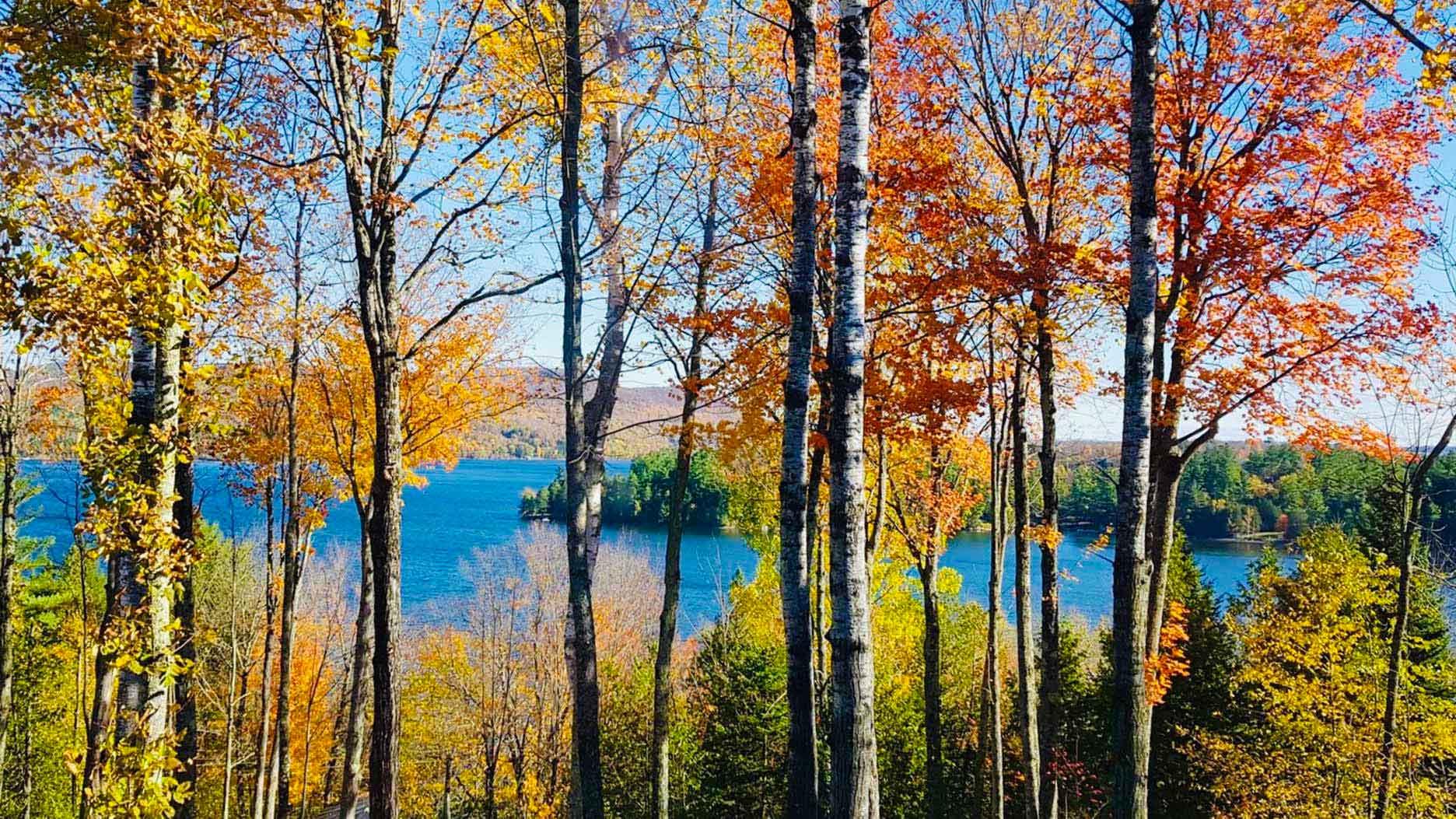 lac et foret à l'automne au quebec