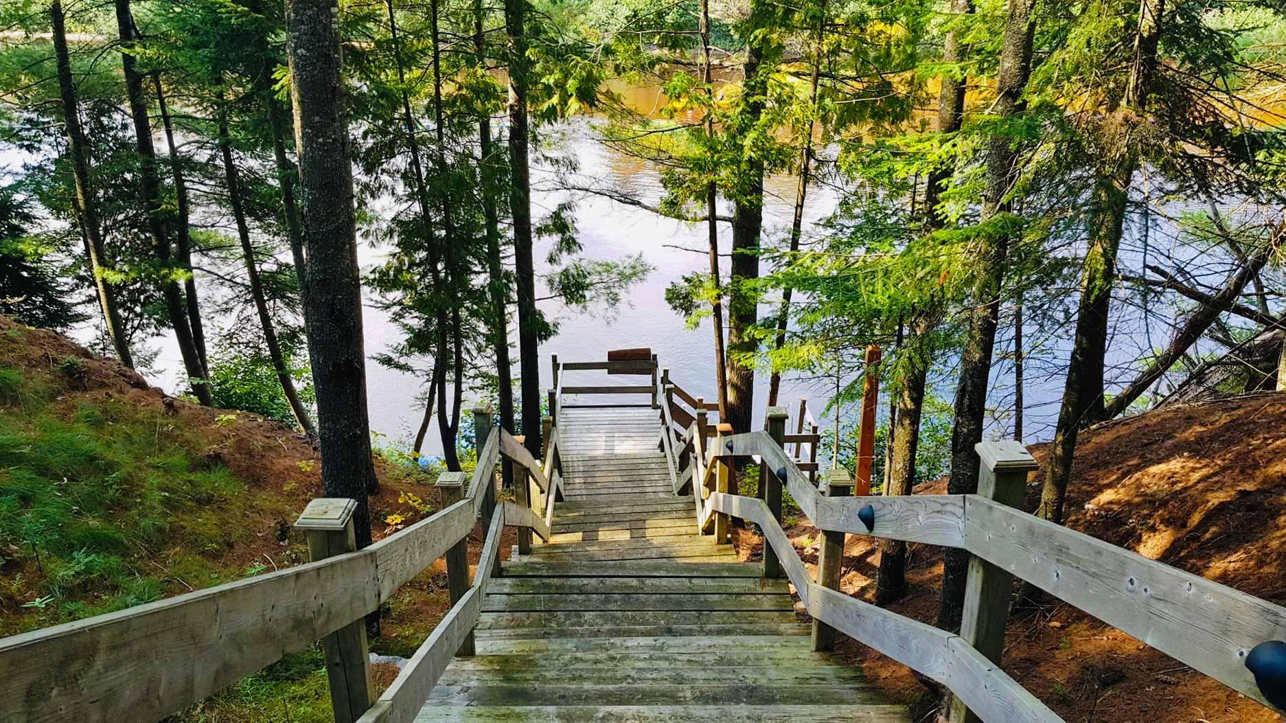 escalier qui descend dans la forêt vers un lac au québec