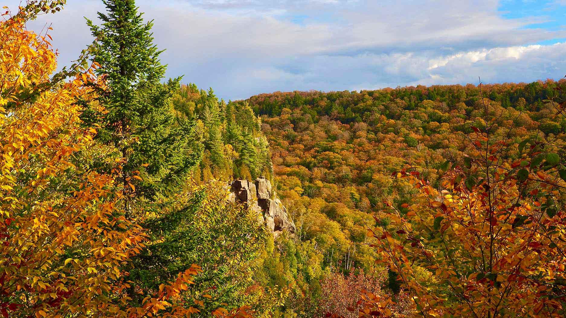 automne au quebec