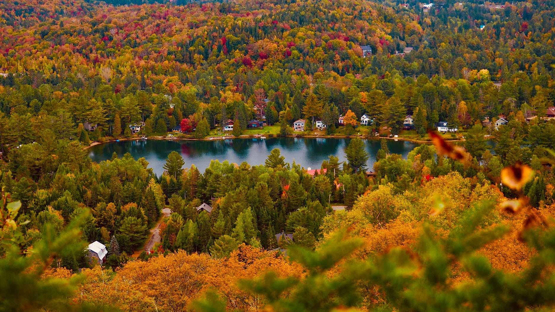 lac au milieu de la foret à l'automne au quebec